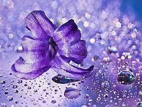 DZJYQ 6.5x5ft(2x1.5m) Purple Glitter Flower Bokeh Droplet Romantic Love Girl Birthday Party Wedding Backdrop Photography Background 100