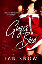 Ginger Bred: A Steamy Christmas Collection (English Edition)