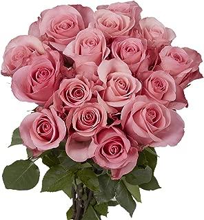 GlobalRose 2 Dozen Pink Roses - Extraordinary Pleasant!