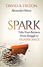Spark: Take Your Business From Struggle to Significance (English Edition)