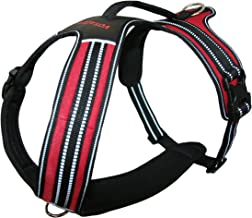Voyager by Best Pet Supplies Adventure No Pull Harness for Dogs w/ Two Leash Attachment Rings - Extra Padded Vest- Heavy Duty Design- Reflective Walking Harnesses- Great Pet Training Tool- Best Dog Lover Gifts