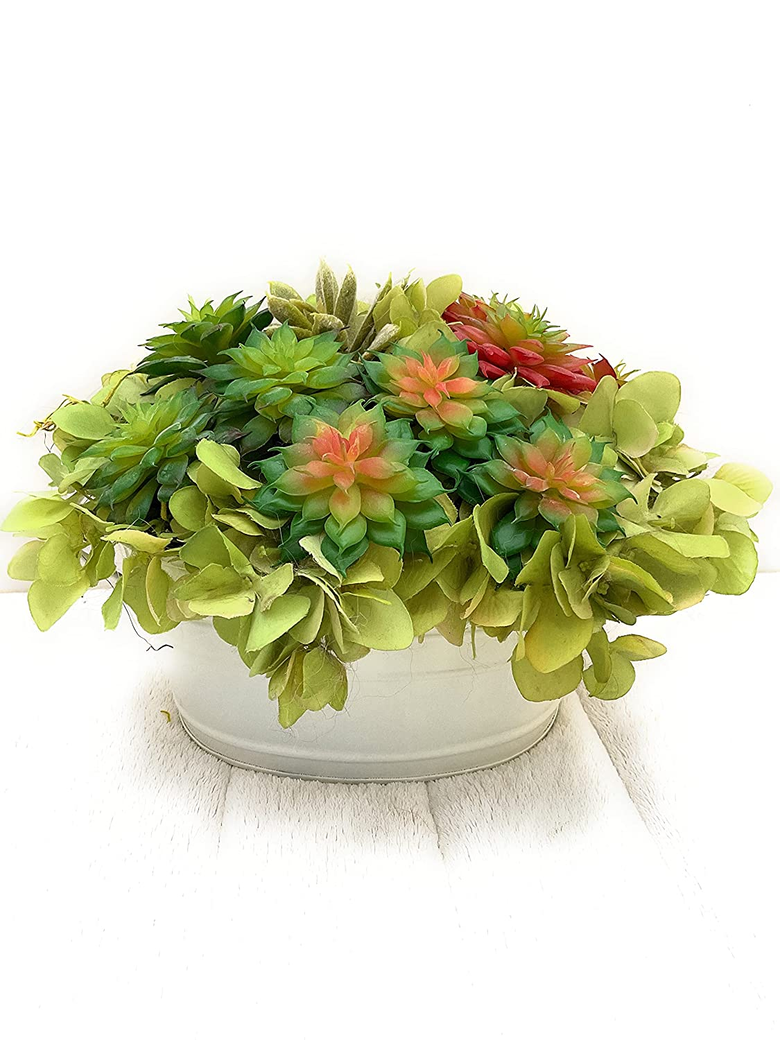 Succulents Spring new work one after another in a metal tub white Sale special price