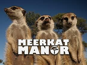meerkat manor season 1 episode 1