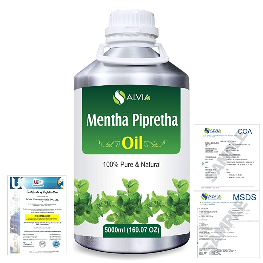 シャンプー申請者責めMentha Pipreta 100% Natural Pure Essential Oil 5000ml/169fl.oz.