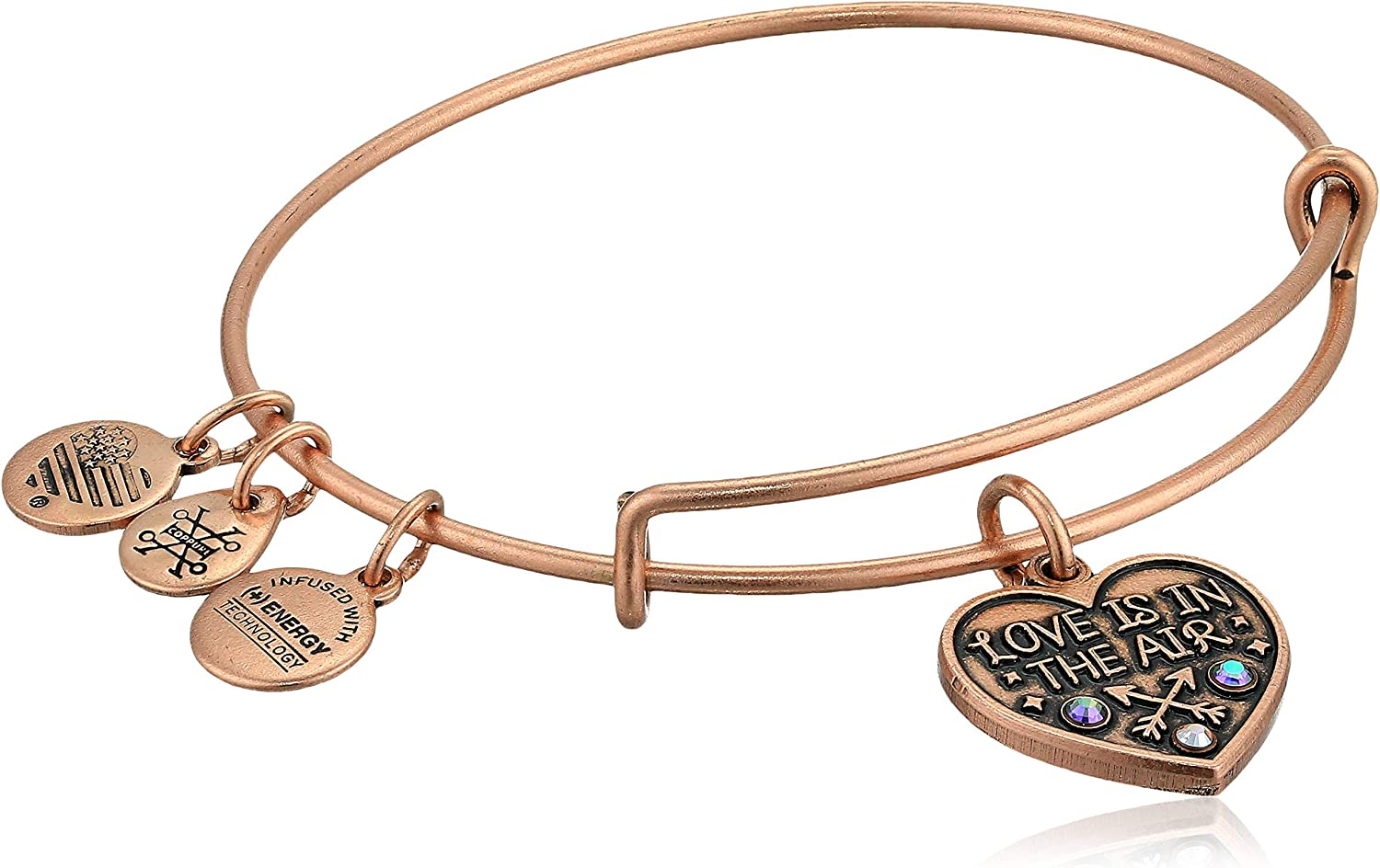 Alex and Ani Women's Love is in The Air Charm Bangle Bracelet, Rafaelian Antique Rose, Expandable