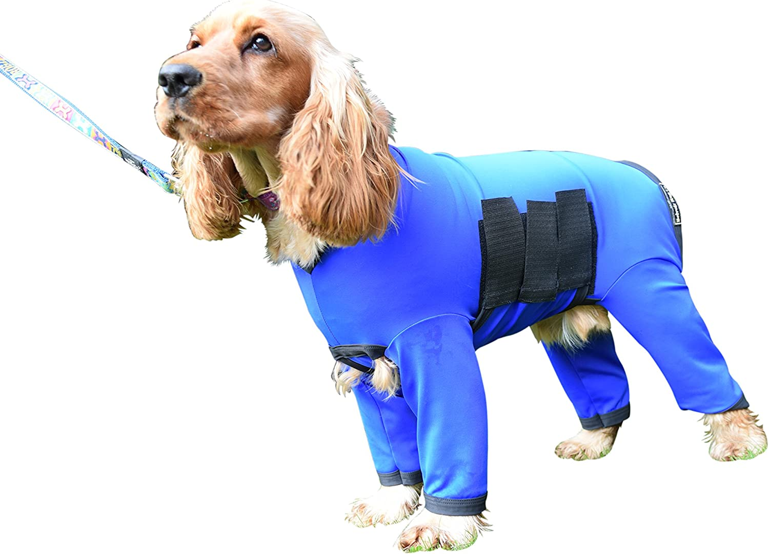Dog Onesie All in One Dog Cover Coat in Nylon Lycra  For Dirty Dogs, Shedding or After Surgery  Royal bluee with Black Binding (XL (23.5  Collar Tail for dog 22 25 ))