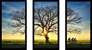 """Picture Perfect International Lonely tree in a field 2"""" Framed Plexiglass Wall Art Set of 3"""