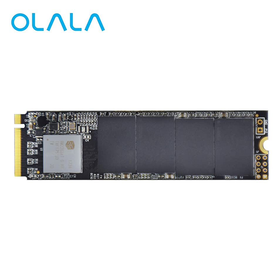 Arch Memory Pro Series Upgrade for Acer 1 TB M.2 2280 PCIe 3.0 x4 QLC for Predator 17X GX-791 NVMe Solid State Drive