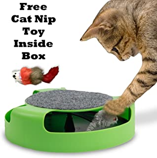 Mumoo Bear Catch the Mouse Motion Chase Toy For Cat and Kittens