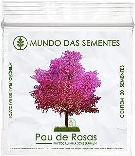 20 Sementes de Pau de Rosas/Resedá Nacional - Physocalymma scaberrimum