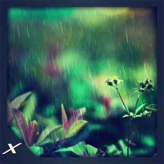 Animated Rain Drops HD - Animated Rainy Drops on Your Screen