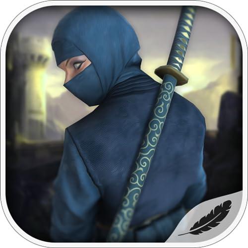 Ninja Volante mostri di natura come il fuoco, l'insetto, il mostro d'aria e il signore scuro ecc. Spade e shuriken ninja Combattimento di stile Kung fu Ninja Transformation