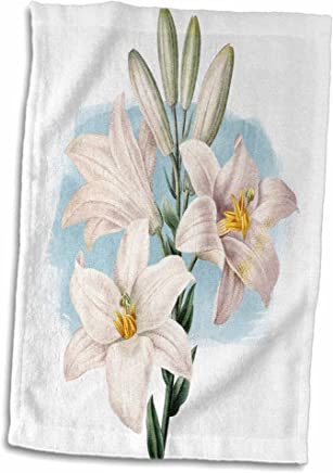 3dRose Pretty White Lilies with Purple Leaves On A Grunge Background Towel 15 x 22
