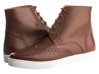 Alexander Noel Kickabout Wing Tip Sneaker High-Top