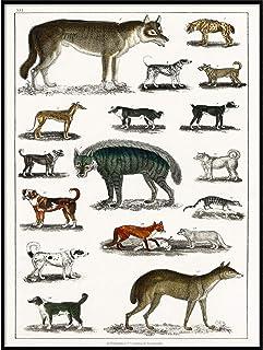 Gicl\u00e9e Art Print Unframed 3 of 3 NYC Dog Walker Series