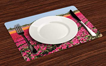 Dutch Placemats for Dining Table, Photo of Tulip Fields in Row from Netherlands Colored in Marigold Vermilion and Pink, Anti-Skid Heat Resistant Place Mat Decor for Kitchen Party, Set of 4, Multicolor