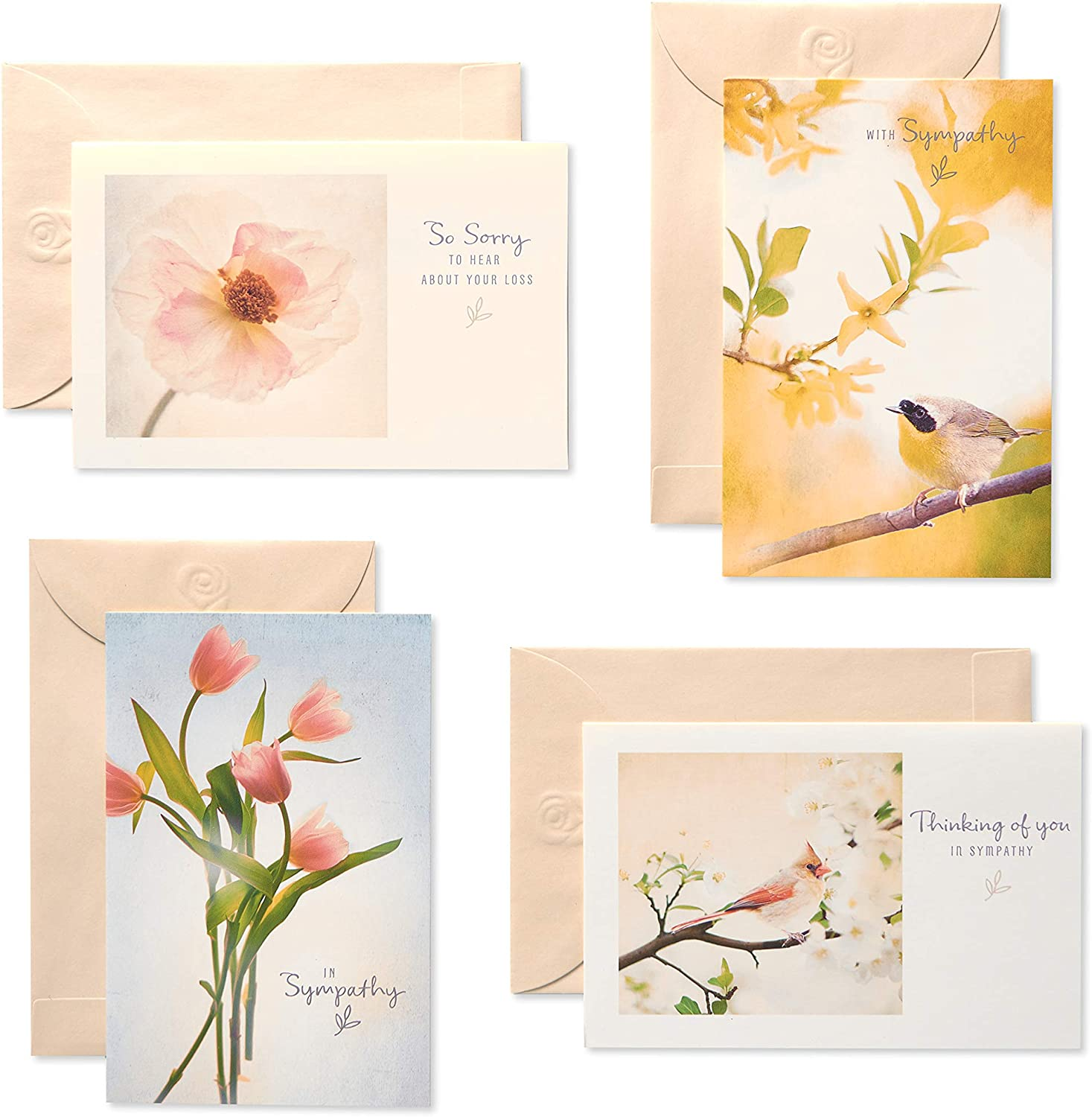 American Greetings Popular product Sympathy Cards OFFicial shop Assortment Flo Envelopes with