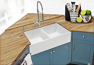 Best farmhouse sinks double bowl Reviews