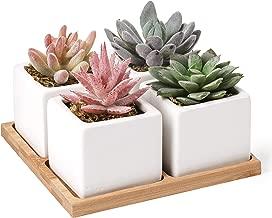 Artificial Succulent Plants Potted - Fake Succulents - Set of 4 - Faux Plants