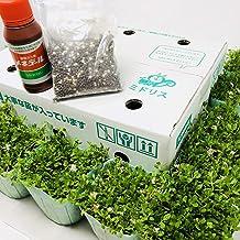 クラピア K7 20ポット すくすくセット 9cmポット苗 20株 肥料2種類(メネデール、有機一発肥料) マニュアル付き グランドカバー スーパーイワダレソウ