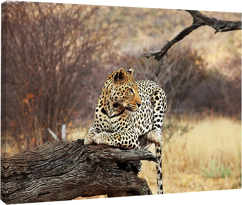 Designart PT12308-20-12 Leopard Sitting on Tree Trunk - Extra Large African Art Print, 20x12