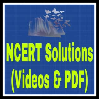 video preparation software