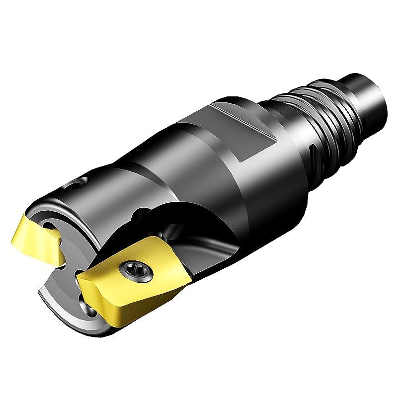 Sandvik Coromant R390-0157EH16-07M Coromill 390 Square Shoulder Milling Cutter, 15.5 mm Connection Diameter, 15.7 mm Maximum Cutting Diameter, 5.8 mm Maximum Depth of Cut jdruhheg040388