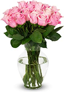 Benchmark Bouquets 2 Dozen Light Pink Roses, With Vase (Fresh Cut Flowers)