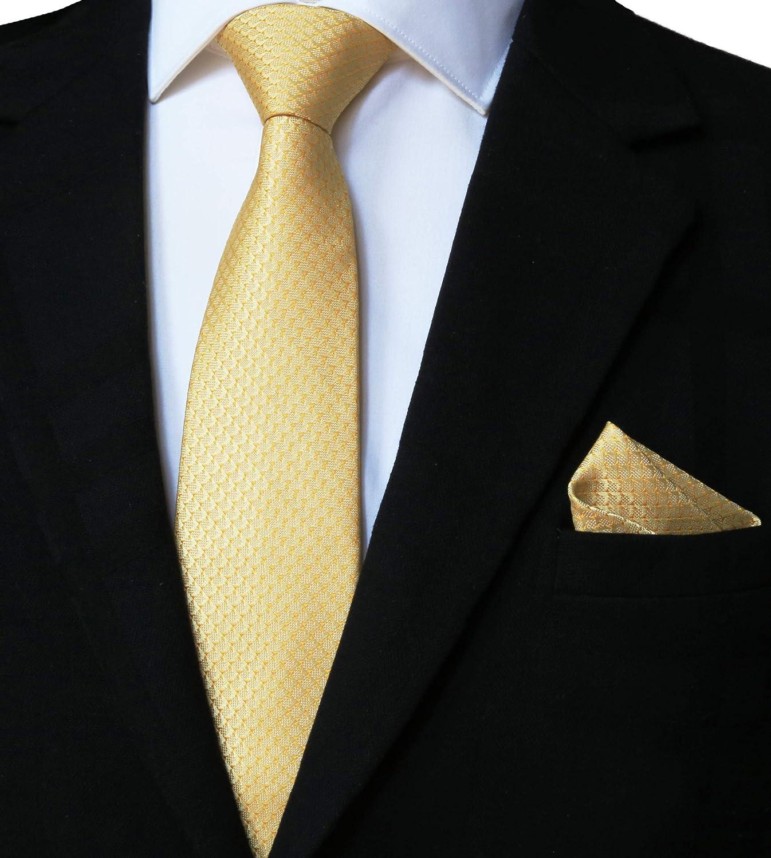WITZROYS Men's Credence Festive Sale price Necktie and Wedding Pocket Set Square for