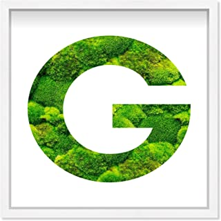 The Oliver Gal Artist Co. Alphabet Letter G Nature' Framed Moss Live Wall Art Home Décor, 12