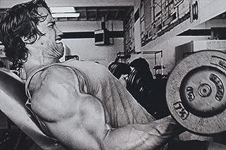 Arnold Schwarzenegger Black White Motivational Inspirational Poster 20x30