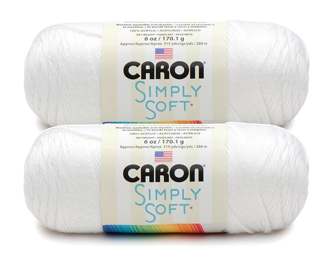 Bulk Buy: Caron Simply Soft Yarn Solids (2-pack) (White)