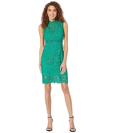Bardot Eleni Lace Dress (Greenlake) Women
