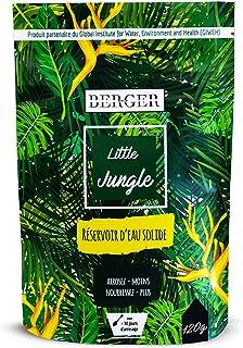 BERGER World - Little Jungle - Hydro Rétenteurd'eau - Granulés Absorbants pour Plantes - Biodégradable - 120g