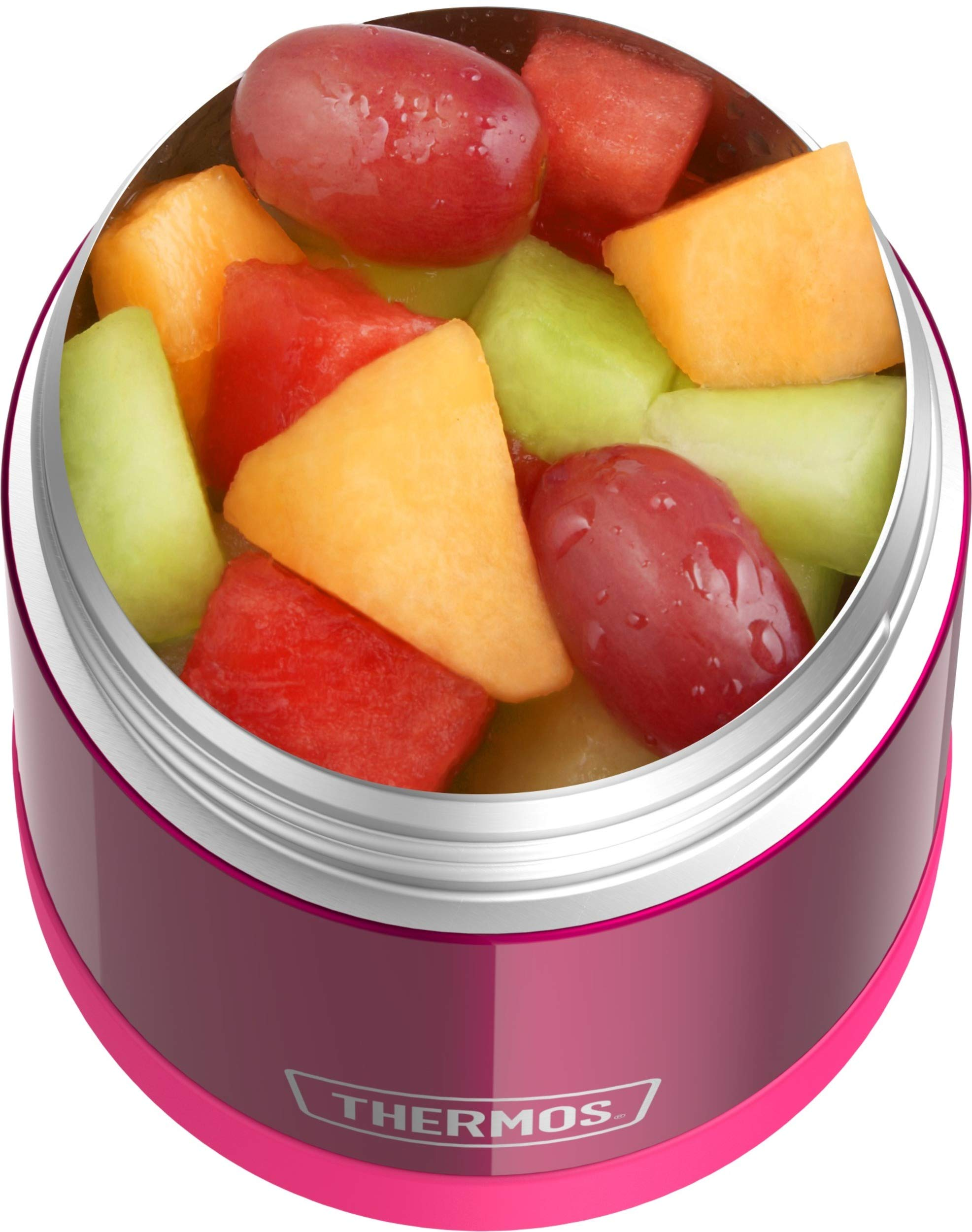 THERMOS FUNTAINER 10 Ounce Stainless Steel Vacuum Insulated Kids Food Jar, Pink