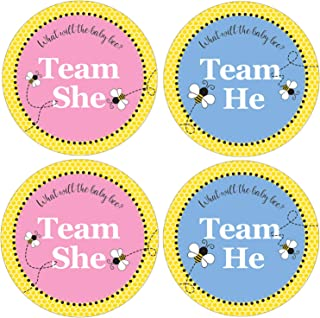 What Will Baby Bee Gender Reveal - Team Boy or Girl Labels - 40 Stickers