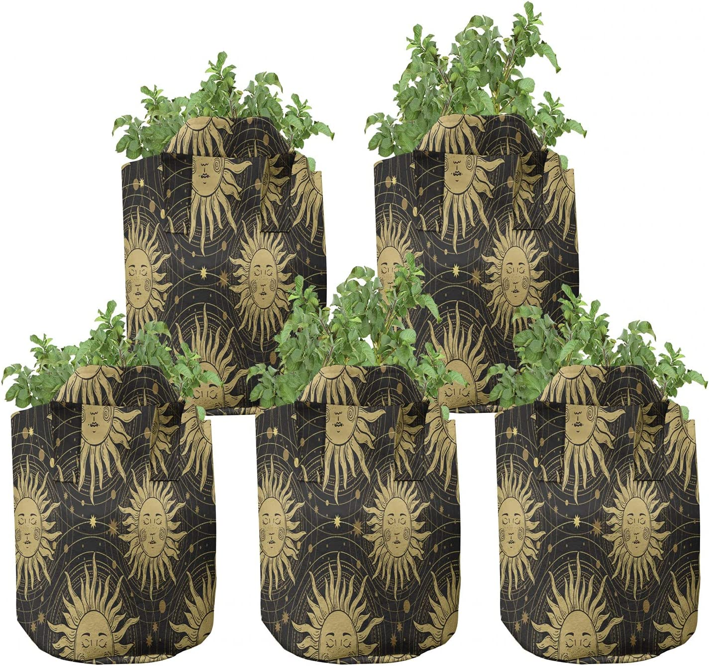 Ambesonne Boho Grow Large special price Bags 5-Pack New item Pattern Sun Occult He Bohemian