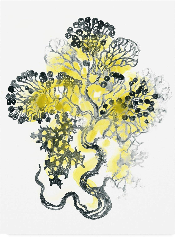 Trademark Fine Art Citron Sea Kelp I by June Erica Vess, 14x19