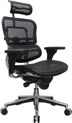 Amazon Com Eurotech Seating Ergohuman High Back Mesh Managers Chair Black Furniture Decor