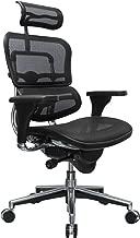 Eurotech Seating Ergohuman ME7ERG(N) High Back Mesh Managers Chair, Black