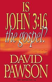 Is John 3:16 the Gospel? (English Edition)