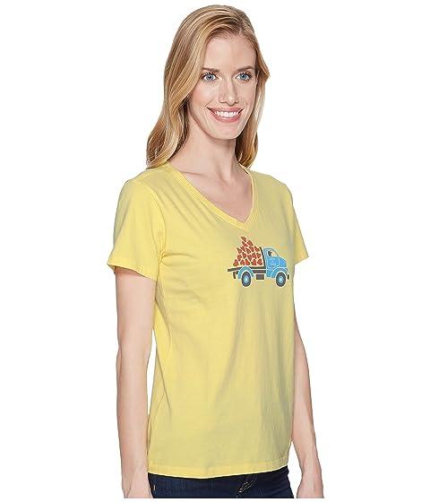 Trituradora es de vida especial Happy Vee entrega buena Yellow La tw4pp