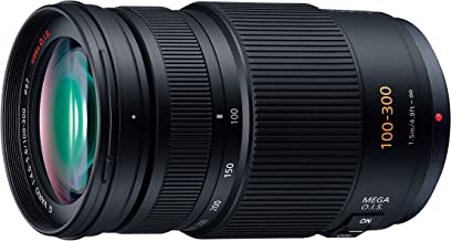 Panasonic LUMIX G VARIO 100-300mm F4.0-5.6 MEGA O.I.S H-FS100300 - International Version (No Warranty)