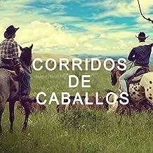 Best el caballo del diablo Reviews