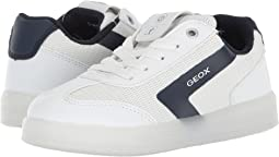 Geox Kids - Kommodor B.A. 4 (Little Kid/Big Kid)
