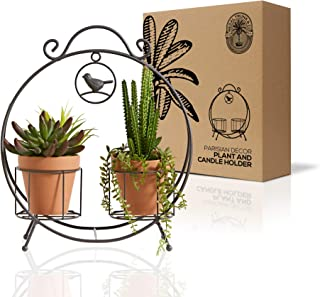 Regal Trunk 2 Pot Mini Plant Stand and Pillar Candle Holder - Rustic Indoor Outdoor Mini Plant Stand - Flower Pot Stand - ...