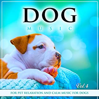 dog music experience calming music for dogs