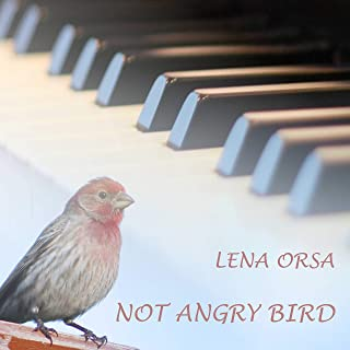 Not Angry Bird