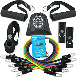Resistance Bands Set, Exercise Bands with Stackable Workout Bands, Door Anchor, Handles, Ankle Straps & Advanced eBook - for Resistance Training, Physical Therapy, Home Workouts, Pilates