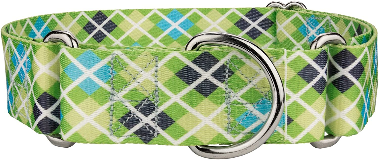 Country Brook Design   1 1 2 Inch Margarita Argyle Martingale Dog Collar  Extra Large